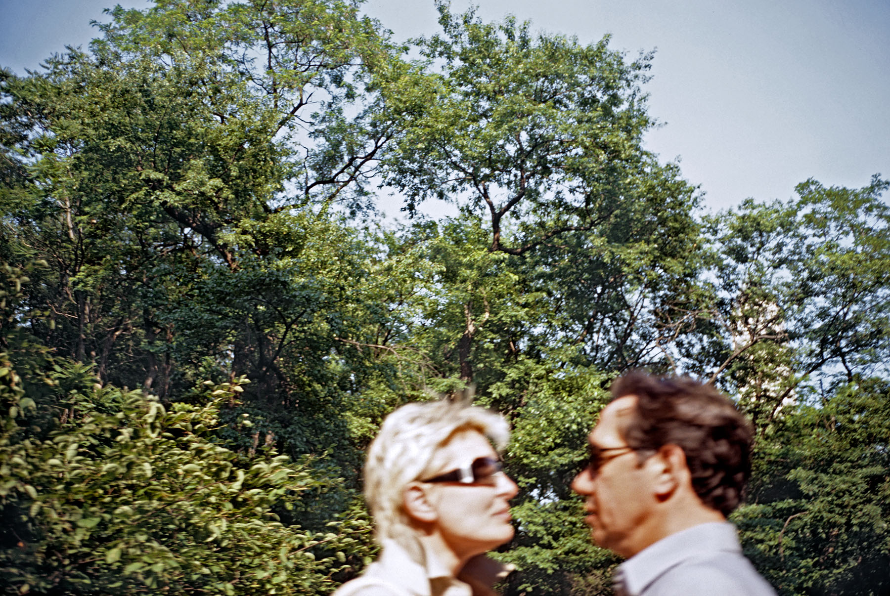 central park blurry couple_55mgs